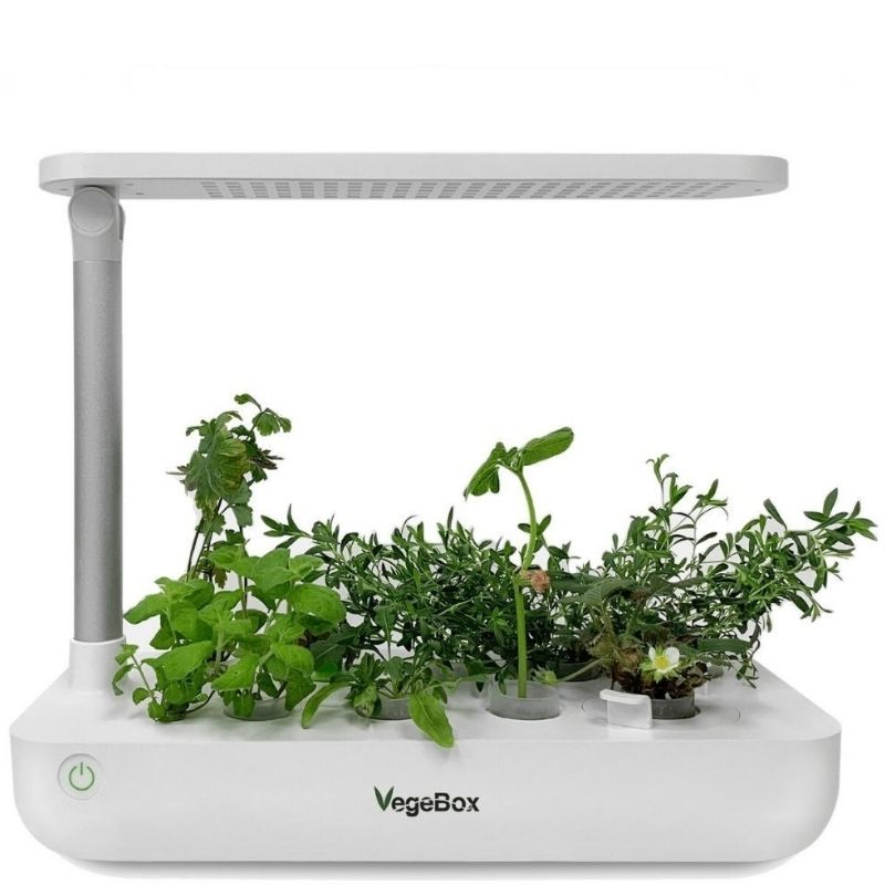 Проращиватели VegeBox