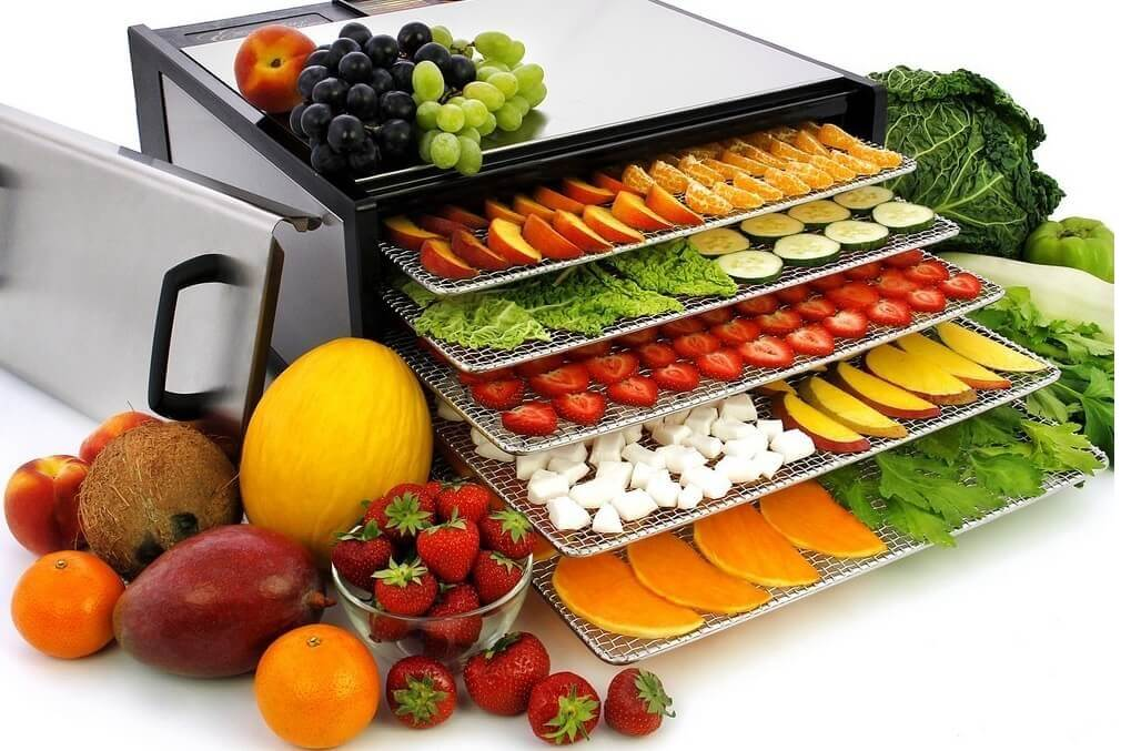 Дегидраторы — «умные» приборы для поклонников здорового питания