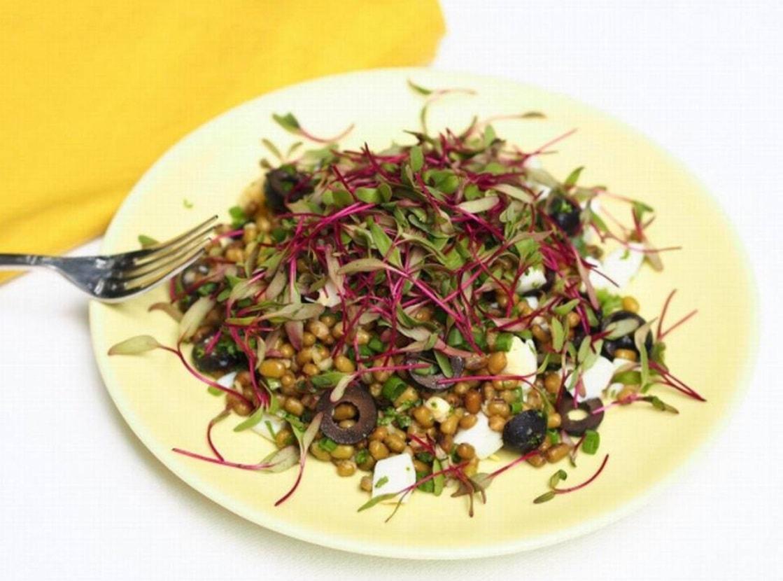 Рецепт из маша с микрозеленью свеклы
