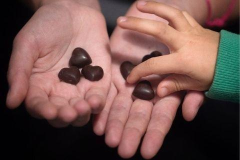 «Самые лучшие детские сладости — это сухофрукты»