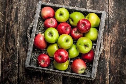 Как сохранить урожай яблок: готовим домашнюю пастилу