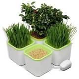 Проращиватели семян автоматические