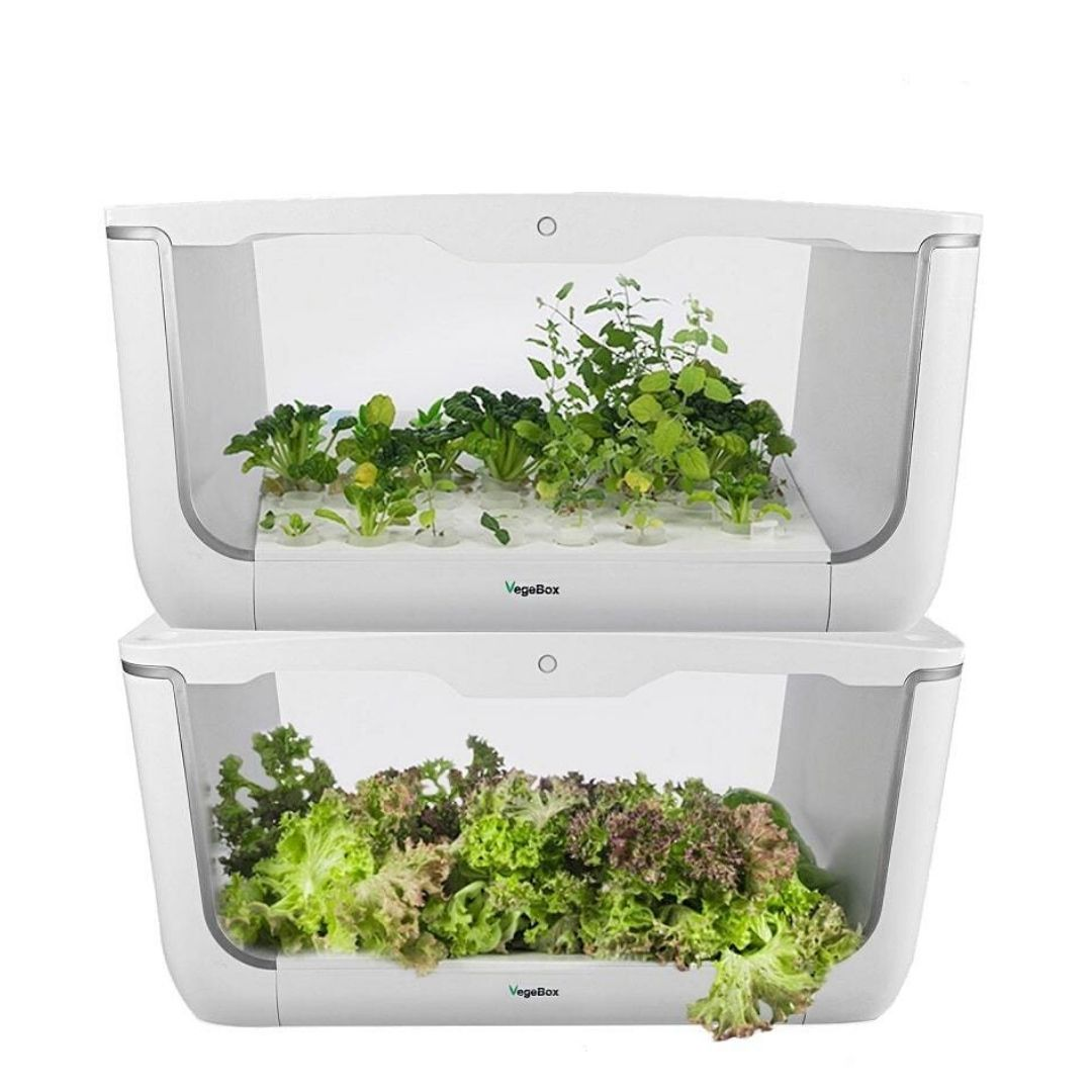 Проращиватель VegeBox H-Box (домашняя садовая ферма, 2 уровня)