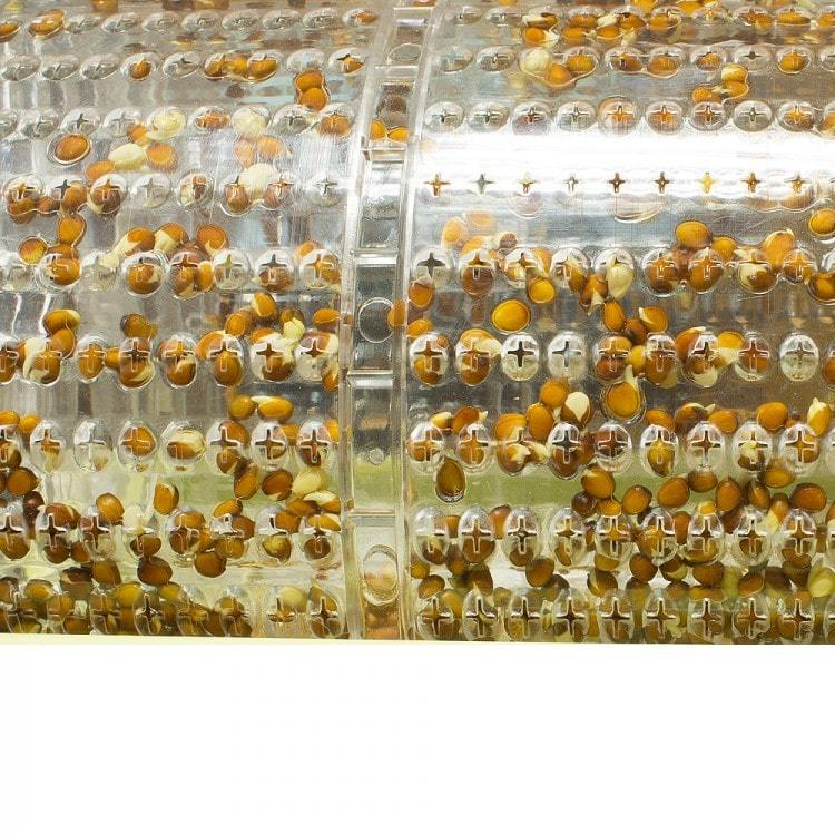 Барабан устройства может быть наполнен 50 граммами семян