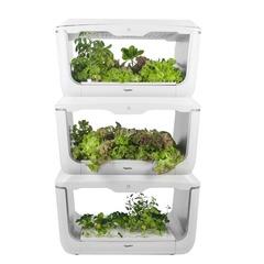 Проращиватель VegeBox H-Box (домашняя садовая ферма, 3 уровня)