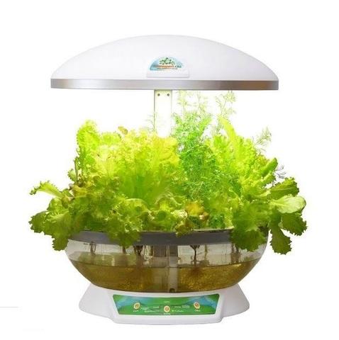 Выращиватель Домашний сад белый (гидропонная установка с прозрачным бассейном)