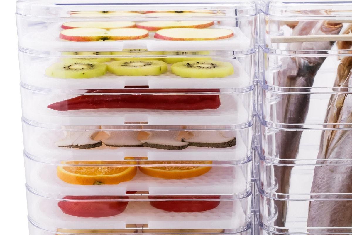Дегидратор для фруктов и овощей Gochu D-310