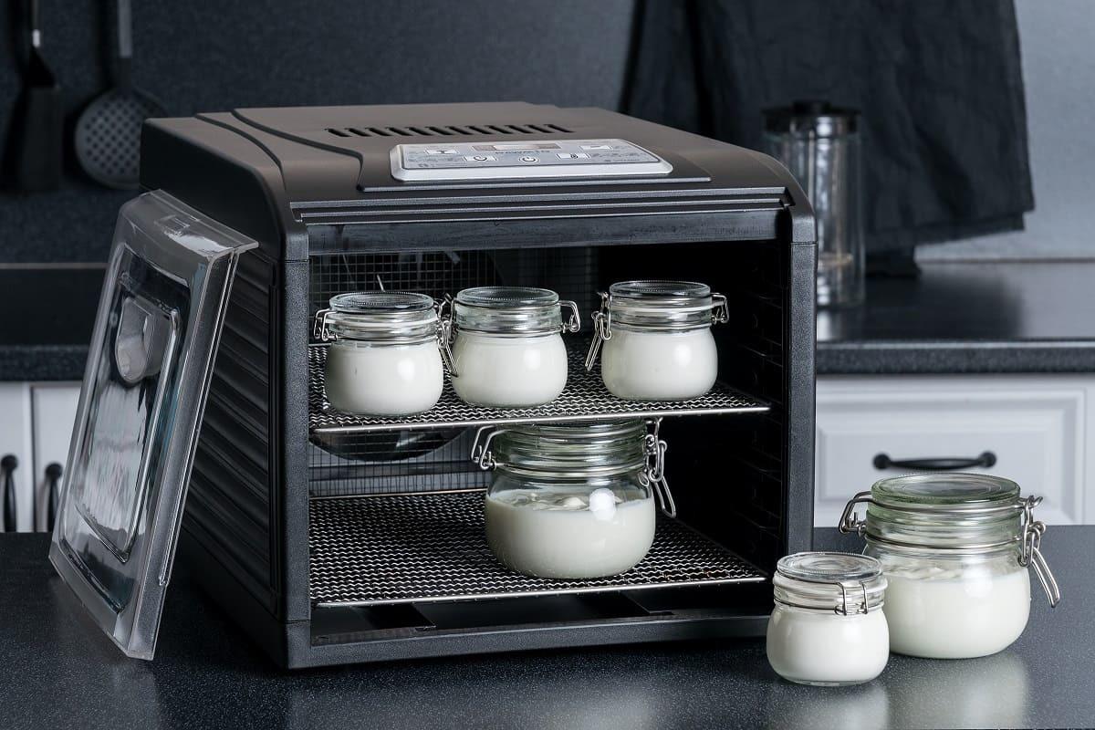 Приготовление йогурта в дегидраторе