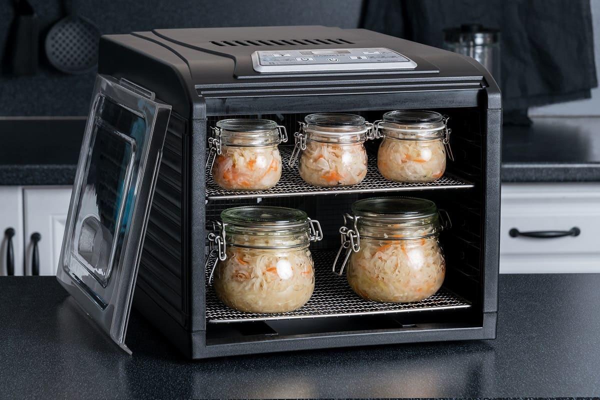 Ферментирование капусты в дегидраторе