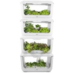 Проращиватель VegeBox H-Box (домашняя садовая ферма, 4 уровня)