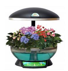 Выращиватель Домашний сад черный (гидропонная установка с прозрачным бассейном)