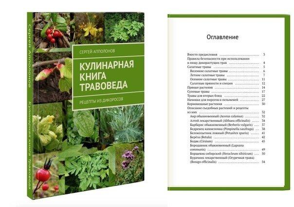 Кулинарная книга травоведа