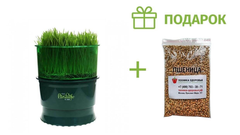 Подарок к автоматическому проращивателю Tribest Freshlife FL-3000
