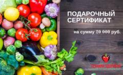 Подарочный сертификат на сумму 20 000 рублей