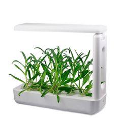 Проращиватель VegeBox K-Box (кухонная садовая ферма)