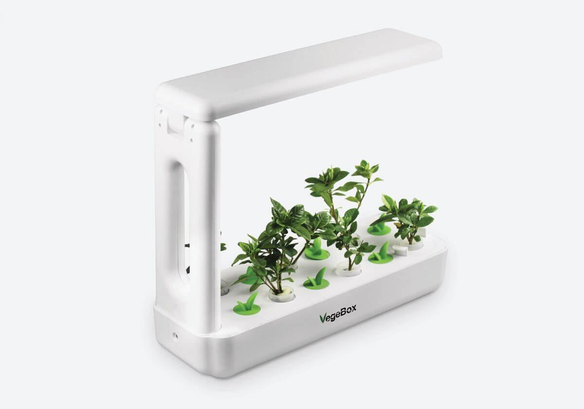 Кухонная гидропонная садовая ферма VegeBox