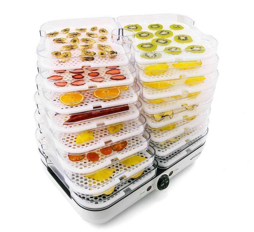 Сушилка (дегидратор) Gochu D-310 для фруктов и овощей